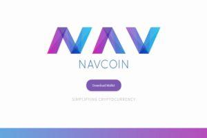 NAVの今後の将来性