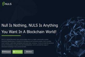 NULSの今後の将来性