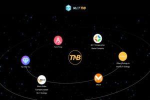 TNBの今後の将来性