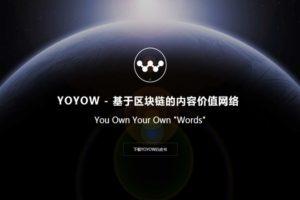 YOYOWの今後の将来性