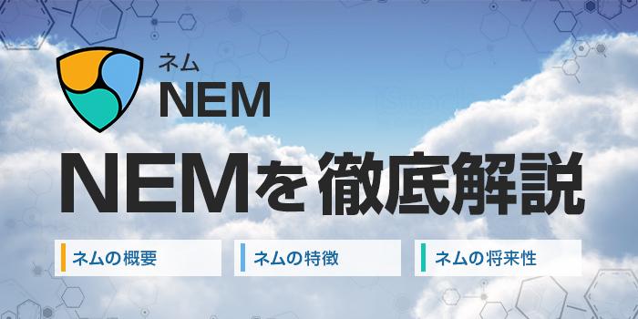 ネム(NEM)の特徴や将来性を解説