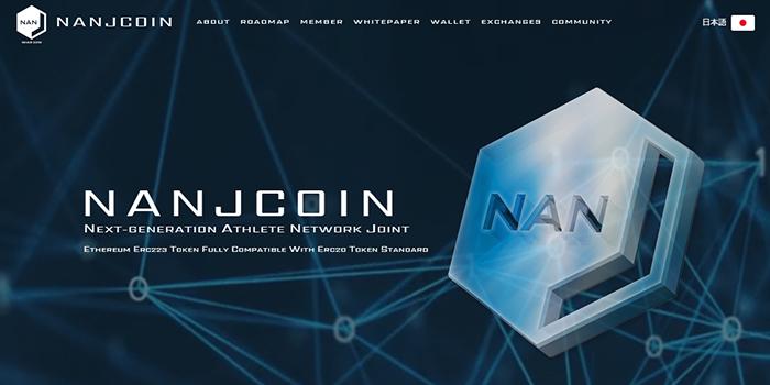 NANJCOINの特徴と将来性を詳しく解説