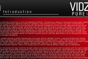 VIDZへの投資は危険!?開発状況と将来性を解説