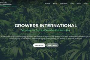大麻業界の仮想通貨GRWIとは?